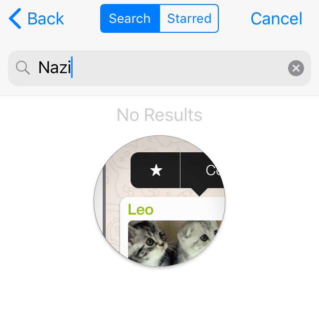 WhatsApp GIF search for 'nazi', resulting in 'No Results'